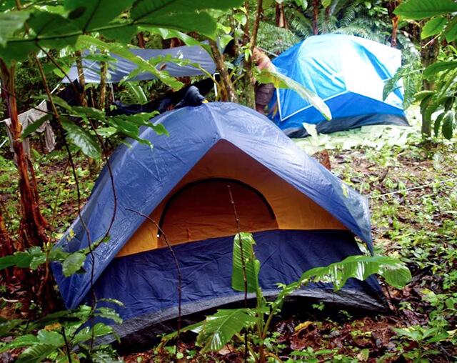 荒岛求生露营