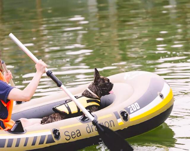 狗狗皮划艇