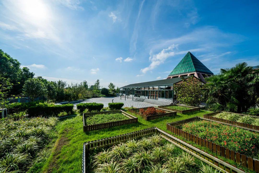 上海太阳岛